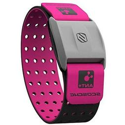 Heart Rate Monitors Rhythm+ Armband - Pink Optical With Dual